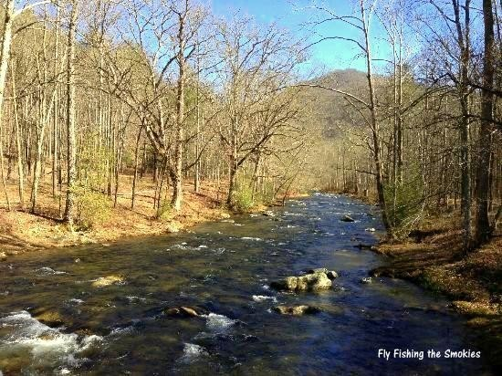 Hazel Creek, Fly Fishing, Great Smoky Mountains National Park, Fly Fishing the Smokies, Hazel Creek Camping