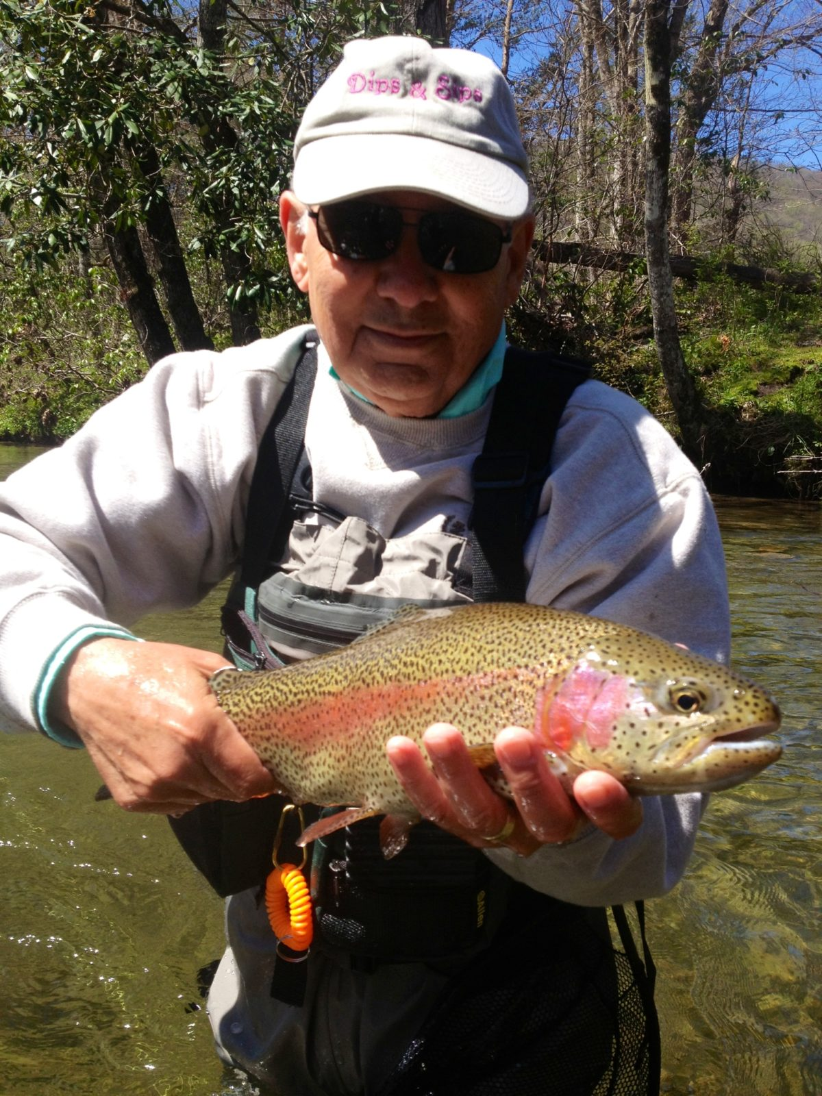 Fly fishing guides pigeon forge sevierville and gatlingburg for Tennessee fishing guide