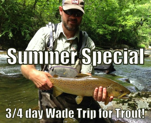 Summer Trout Special, Gatlinburg Fly Fishing Guides, Pigeon Forge Fly Fishing Guides, Sevierville Fly Fishing Guides