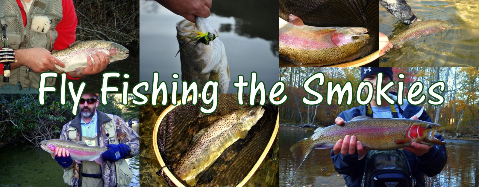 Photo gallery fly fishing guides and trips in gatlinburg for Fishing in pigeon forge tn