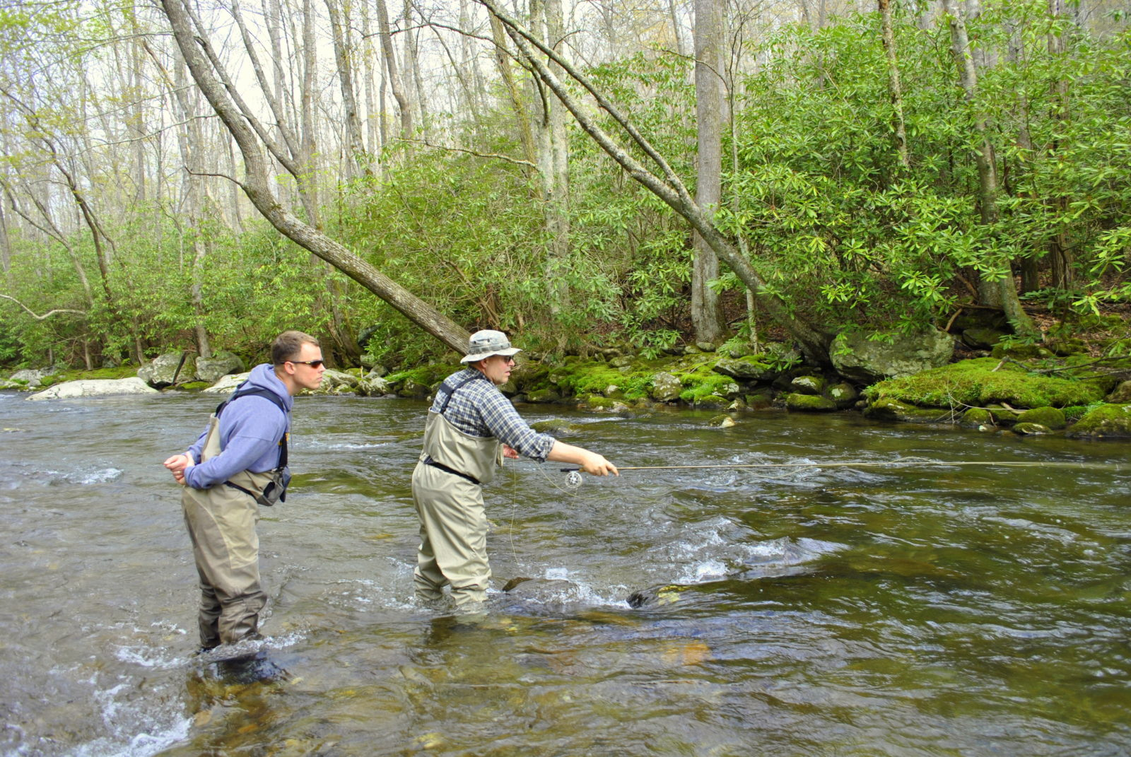 Fly fishing guides pigeon forge sevierville and gatlingburg for Fishing in gatlinburg tn