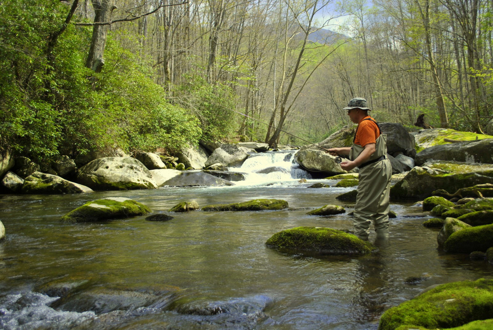 fly fishing guides and trips in gatlinburg and pigeon forge tn