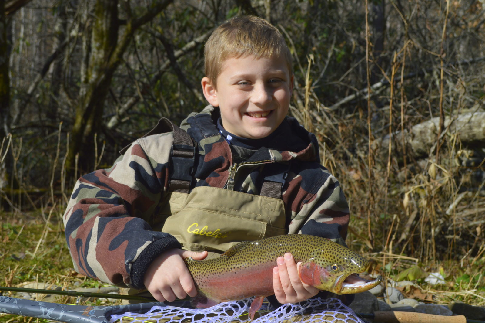 Fly fishing guides and trips in gatlinburg and pigeon forge tn for Smoky mountain trout fishing