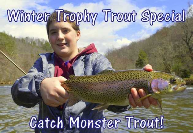 Winter Trophy Trout, Winter Fly Fishing, Winter Fly Fishing Specials, Fly Fishing the Smokies, Gatlinburg, Pigeon Forge, Sevierville, Wears Valley, Tennessee