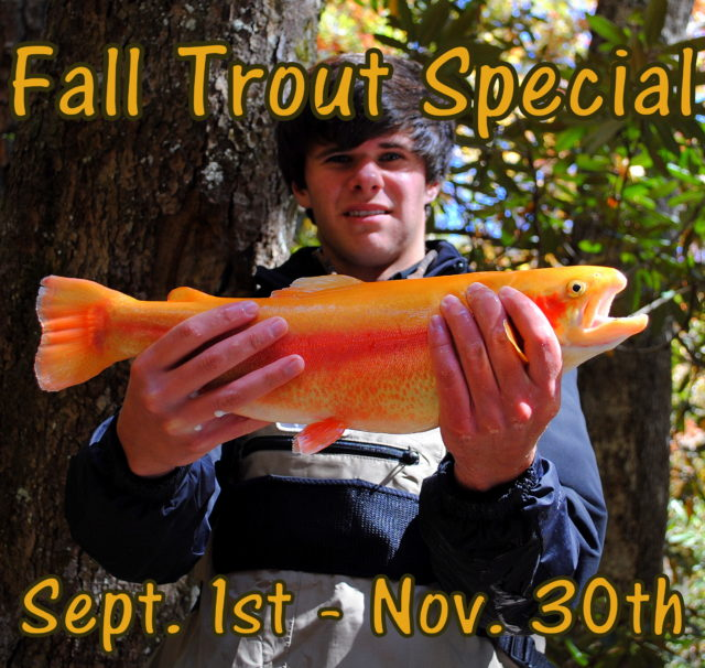 Fly Fishing Guides for Trout in the Smoky Mountains Gatlinburg Pigeon Forge Sevierville Tennessee, The Smoky Mountains Best Trout Fishing Guides, Fly Fishing the Smokies,